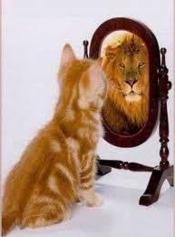 chat-lion