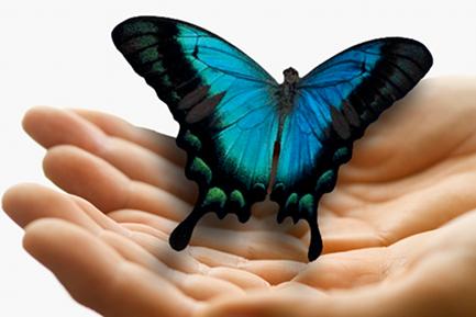 hands_butterfly2